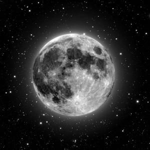 Profile picture for Di Carlin (Moon)