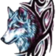 View Jadedwolf's Profile