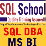 Sql School Training Inistitute