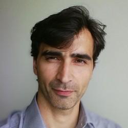 Denis Demidov