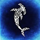 View marineshark's Profile