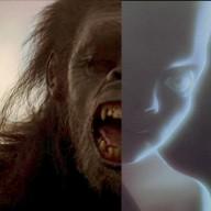 Evolucionista