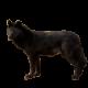 cpuwolf