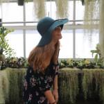 avatar for Kelly Sodano