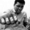BassheadT