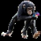 View AnPlayer's Profile