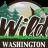 wildwashington