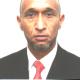 محمد عدنان بن مير