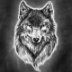 Toxic_Wolf's avatar
