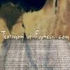 Testimony of Prophecy