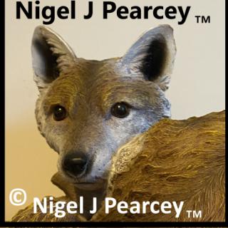Nigel Pearcey