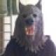 Sam Neubardt's avatar