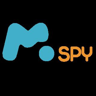 mspysoftware