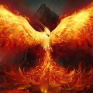 phoenix333999
