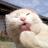 Seong-ho Cho's avatar