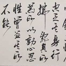 Avatar for zhaoyongqing from gravatar.com