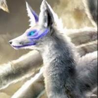 Kobalt.Kitsune