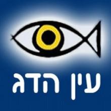 Fish_eye