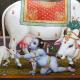 Avatar for Dilbar Singh Rawat