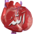 Avatar for Mubina Shaikh