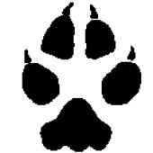avatar for Bonnie, David