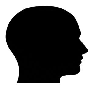 Profile picture of PC