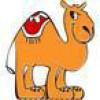 Sara @ Debt Camel