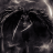 Avatar of DarkShadow13FTW