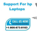 Avatar Of Laptop Support
