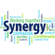 synergies.unlimited