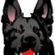 Roberto Blackdog