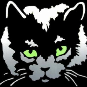 Ben Cat's picture