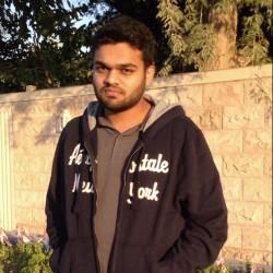Faisal Anees