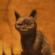 mebeNL's avatar