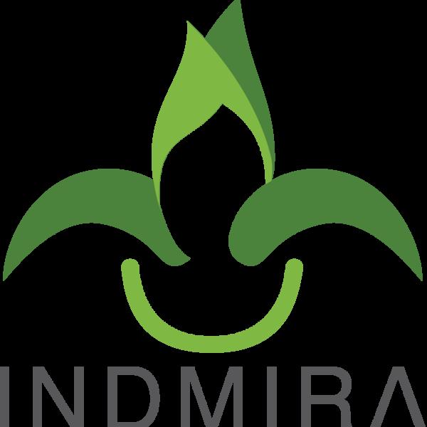Internship Indmira