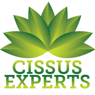 The Cissus Experts