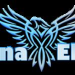 Avatar for Binary Options