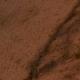 Profile picture of mauricioarango