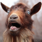 GoatAdvocate