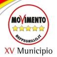 Municipio XV