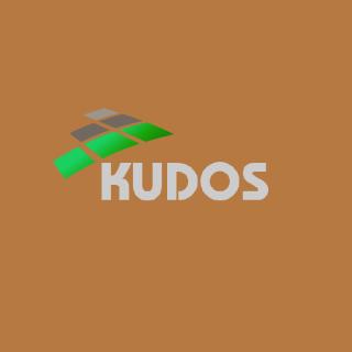 KUDOS BUSINESS