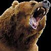 imax323 avatar
