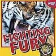 fightingfury_88