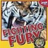fightingfury_88
