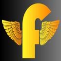 FlyNeX's Photo
