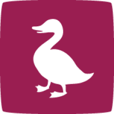 Avatar for ducksboard from gravatar.com