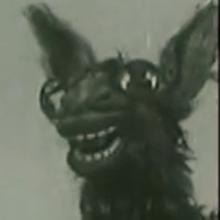 doggylikesparko