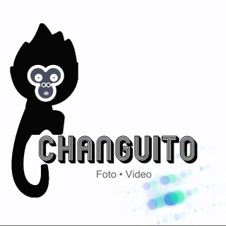 Changuito Estudio