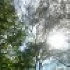 View Baumi404's Profile