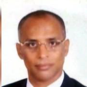 Photo of أحمد المطعني